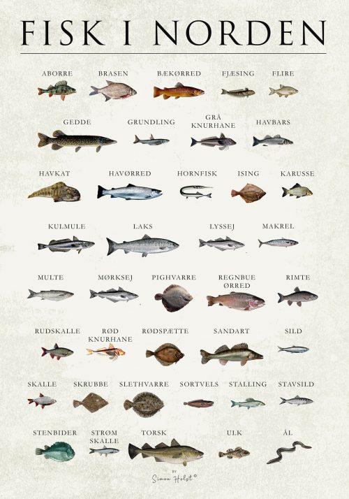 Fisk i norden