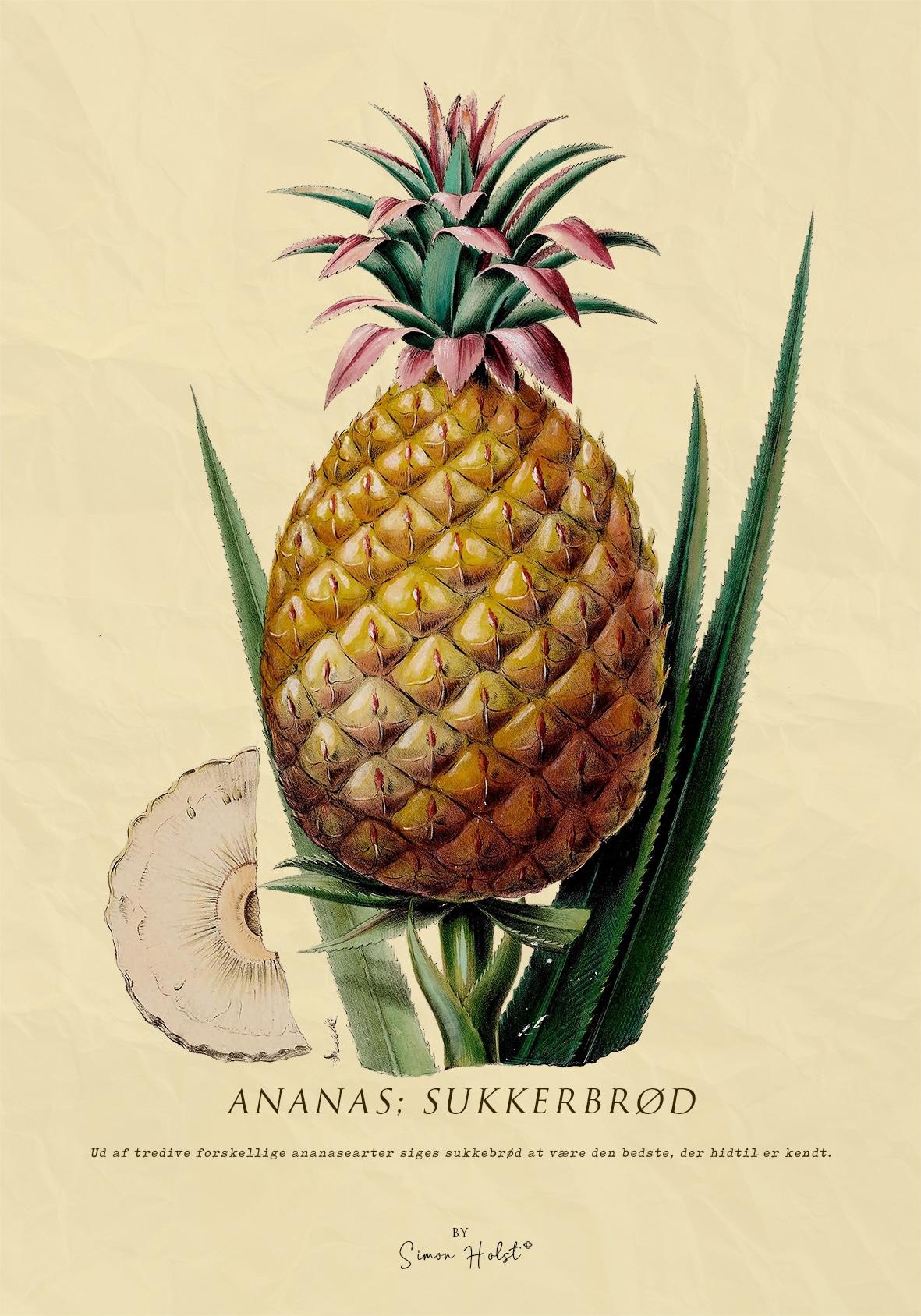 Ananas Plakat