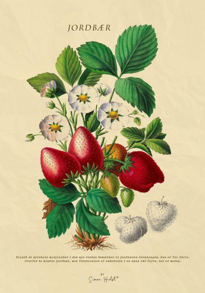 Jordbær Plakat