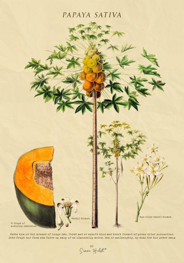 Papaya Plakat