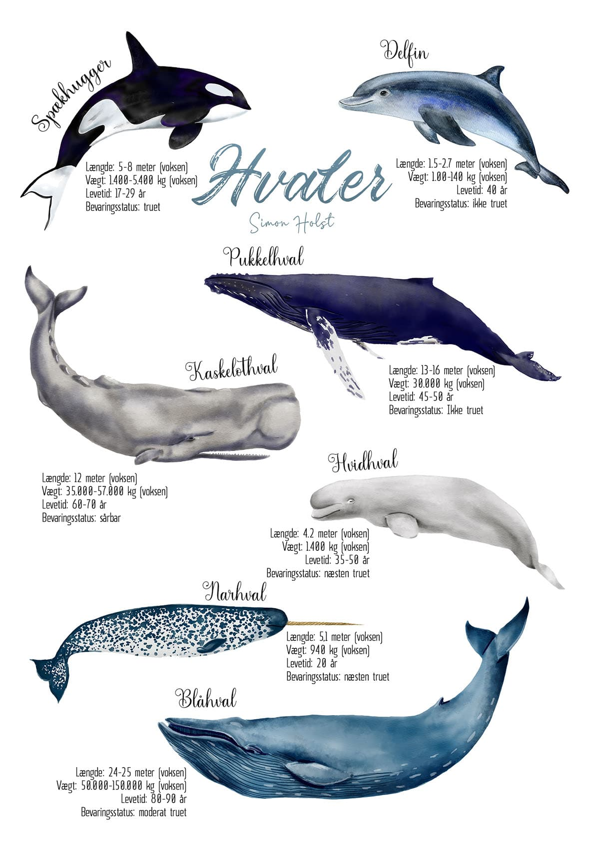 hval kort